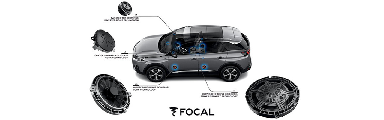 Focal System